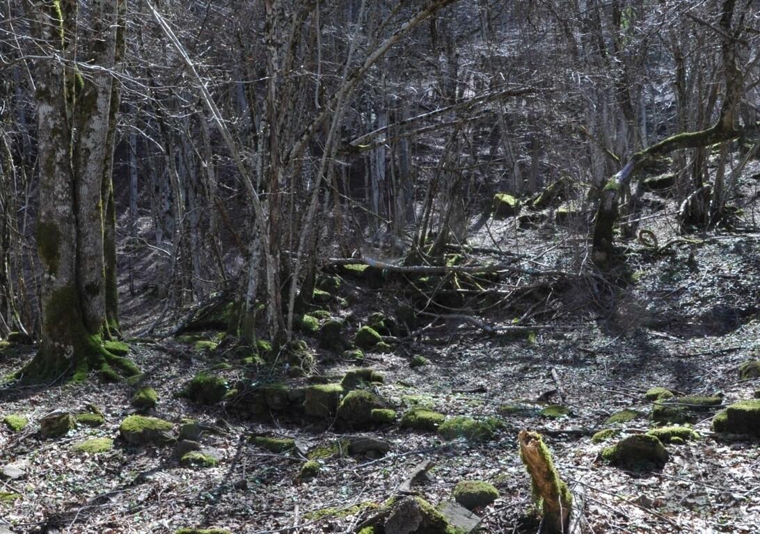 Il sito de le Capanne, presso la confluenza del Fosso del Rovino o delle Capanne nel Bidente, con evidenti resti dell'insediamento (7/04/18).